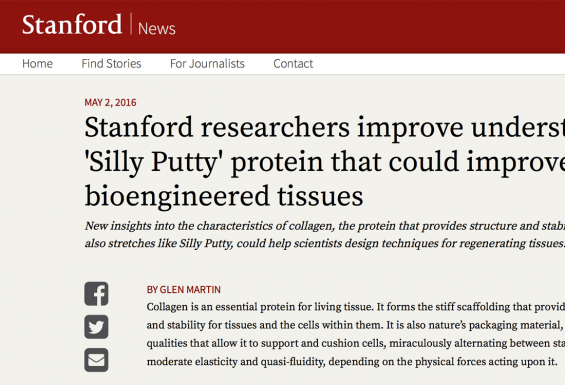 Screenshot of article on Stanford News website